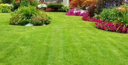 Call Us For Custom Landscaping Work In Lexington, KY