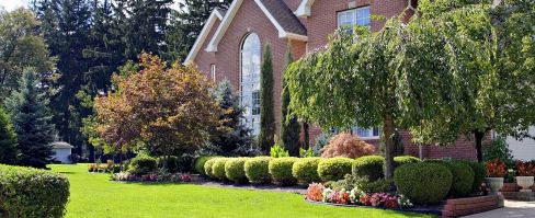 Complete Lawn & Landscaping Services in Lexington, KY