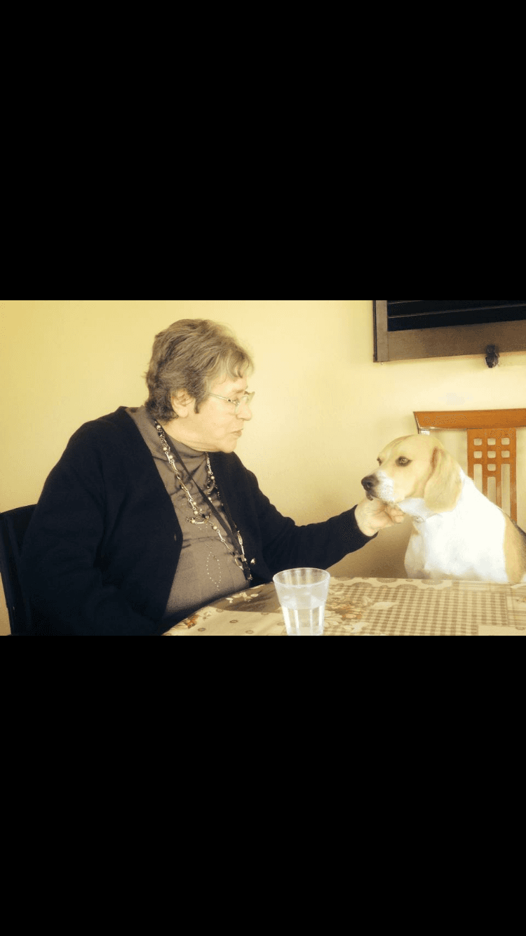 pet terapy per anziani