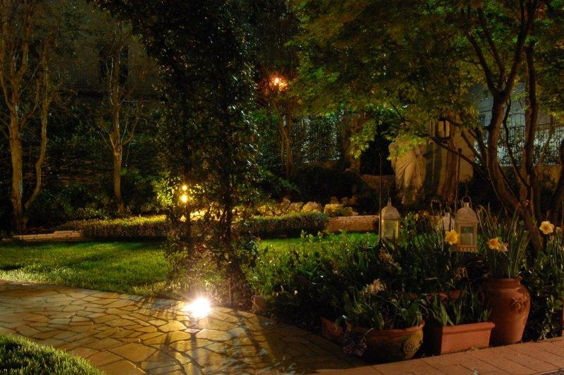un giardino con delle luci accese