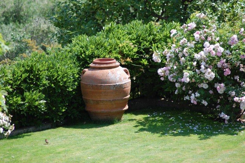 un prato con un vaso grande di terracotta