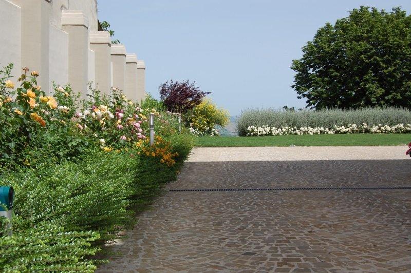 un pavimento e intorno delle piante fiorite
