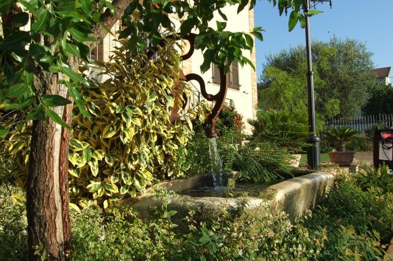 un giardino con una fontana