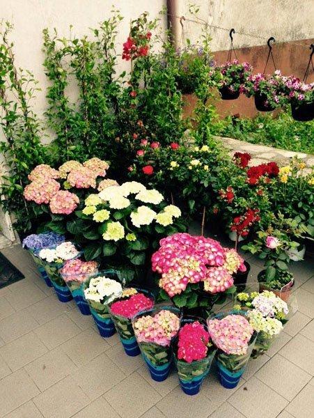 Composizioni floreali per eventi e cerimonie