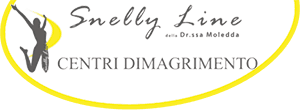 logo Snelly Line