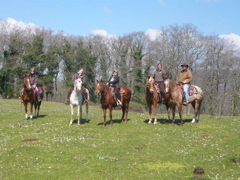 fila di cavalieri in un campo