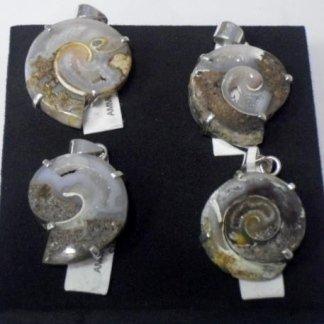 Gioielli con Ammoniti Fossili
