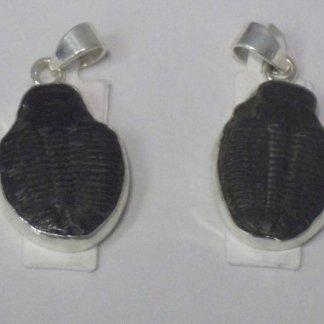 Ciondoli con Trilobiti