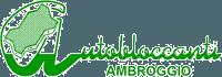 AUTOBLOCCANTI AMBROGGIO