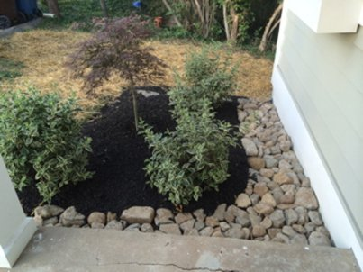 Landscaping with stones and shrubbery in Cinncinnati