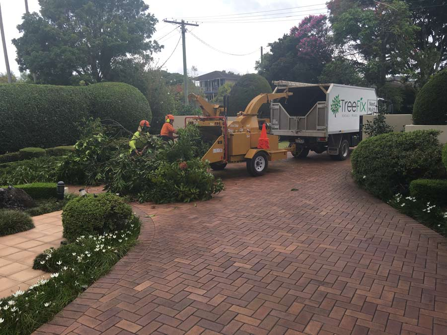 crew feeding tree limbs into a wood chipper
