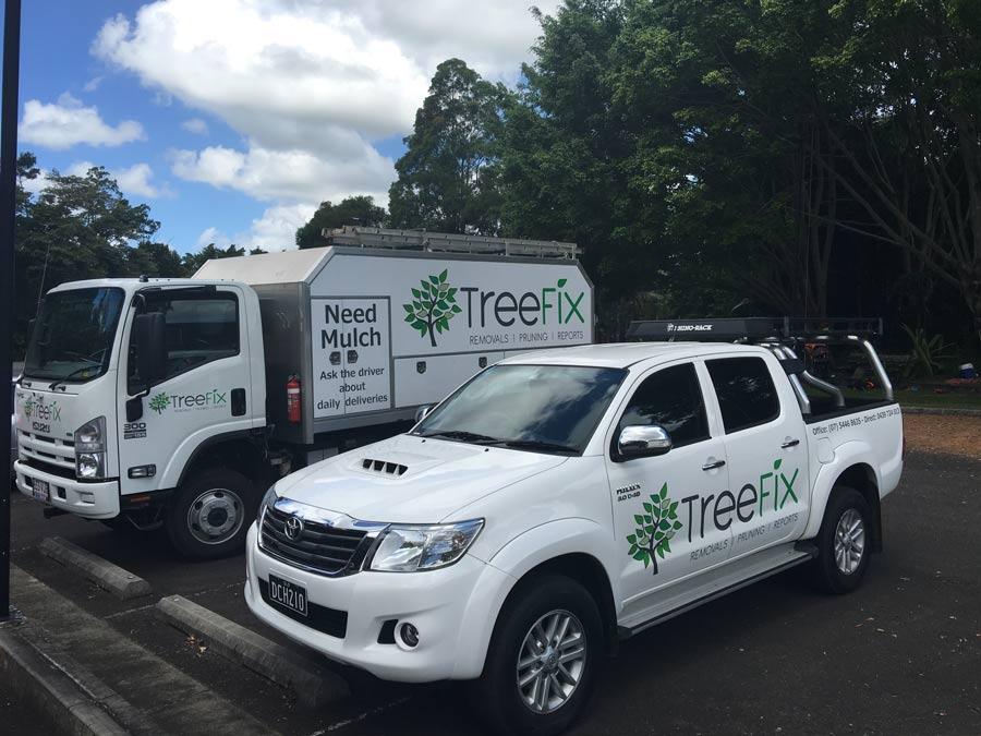 treefix company vehicles