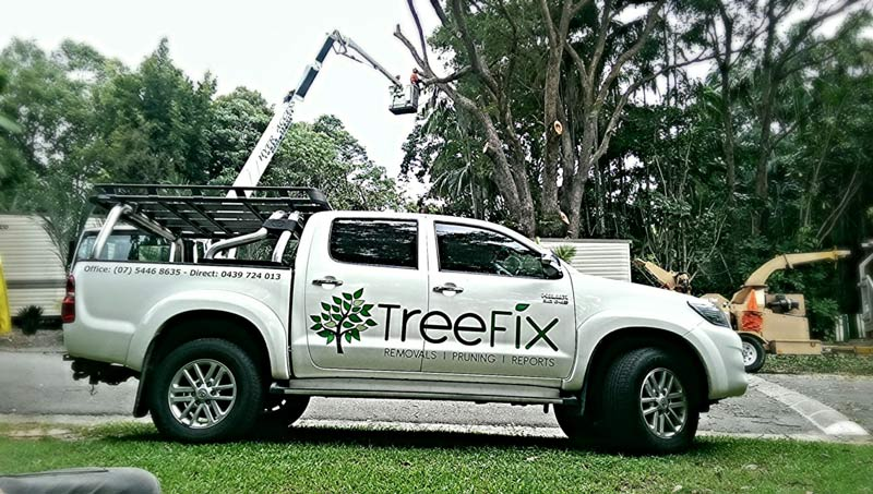 tree fix company truck