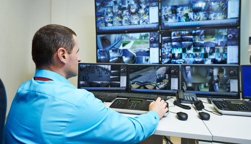 Security expert monitoring security cameras