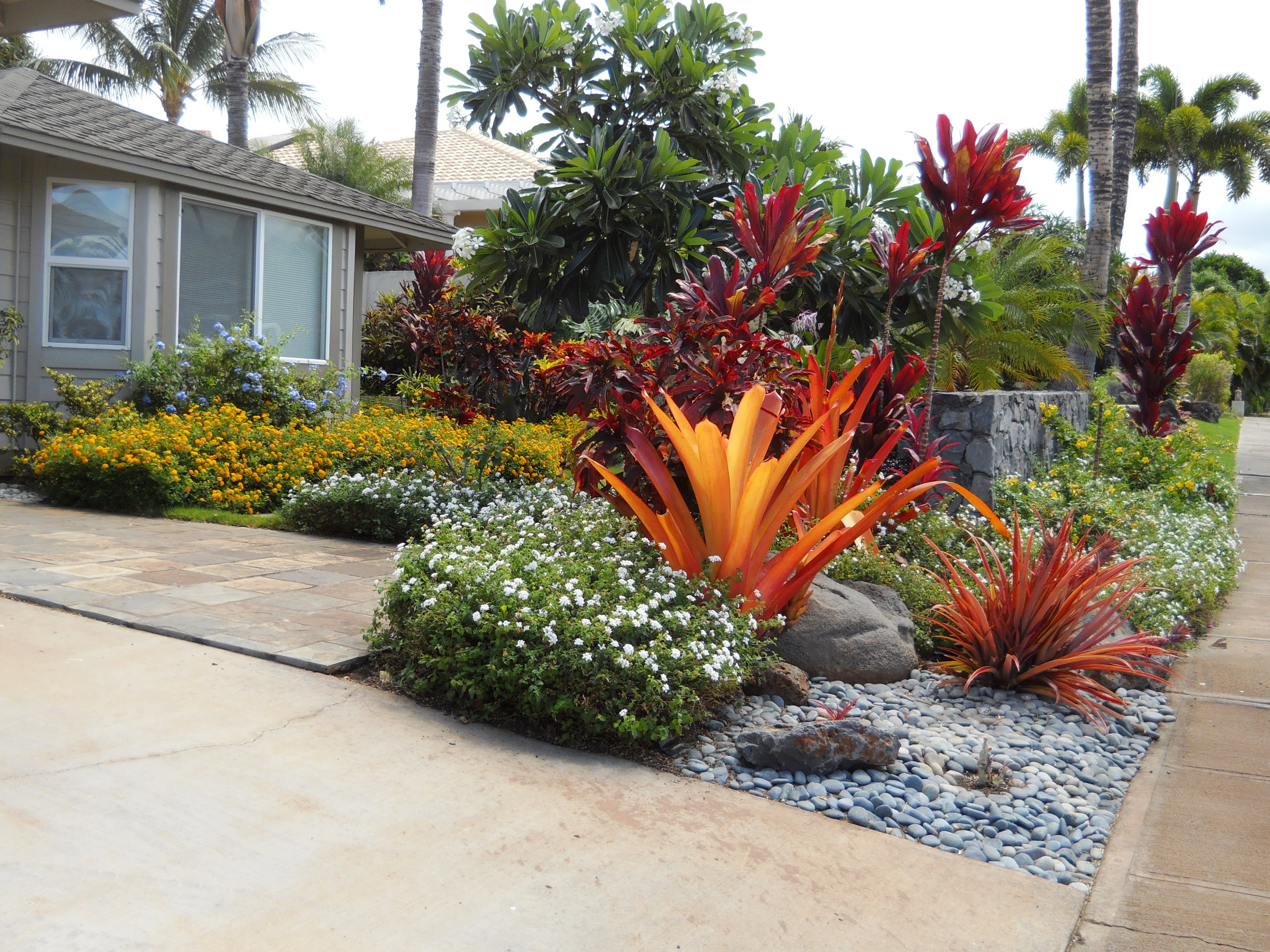 Landscape design maui hi ag services of maui for Landscape design hawaii
