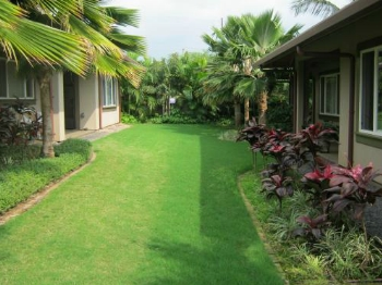 Property designed by our landscaper in Maui, HI.