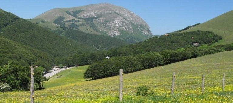 escursioni montane