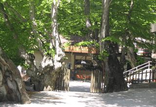 il ristorante monte cucco da tobia