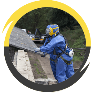 asbestos removal expert