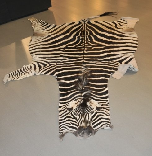 tappeti di pelle animale