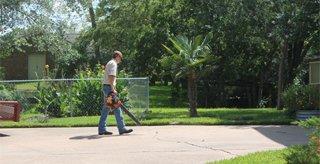 Lawn fertilization program