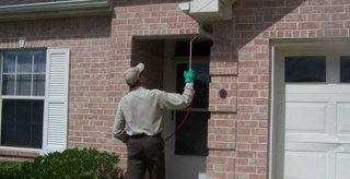 Treating outside on pest control service