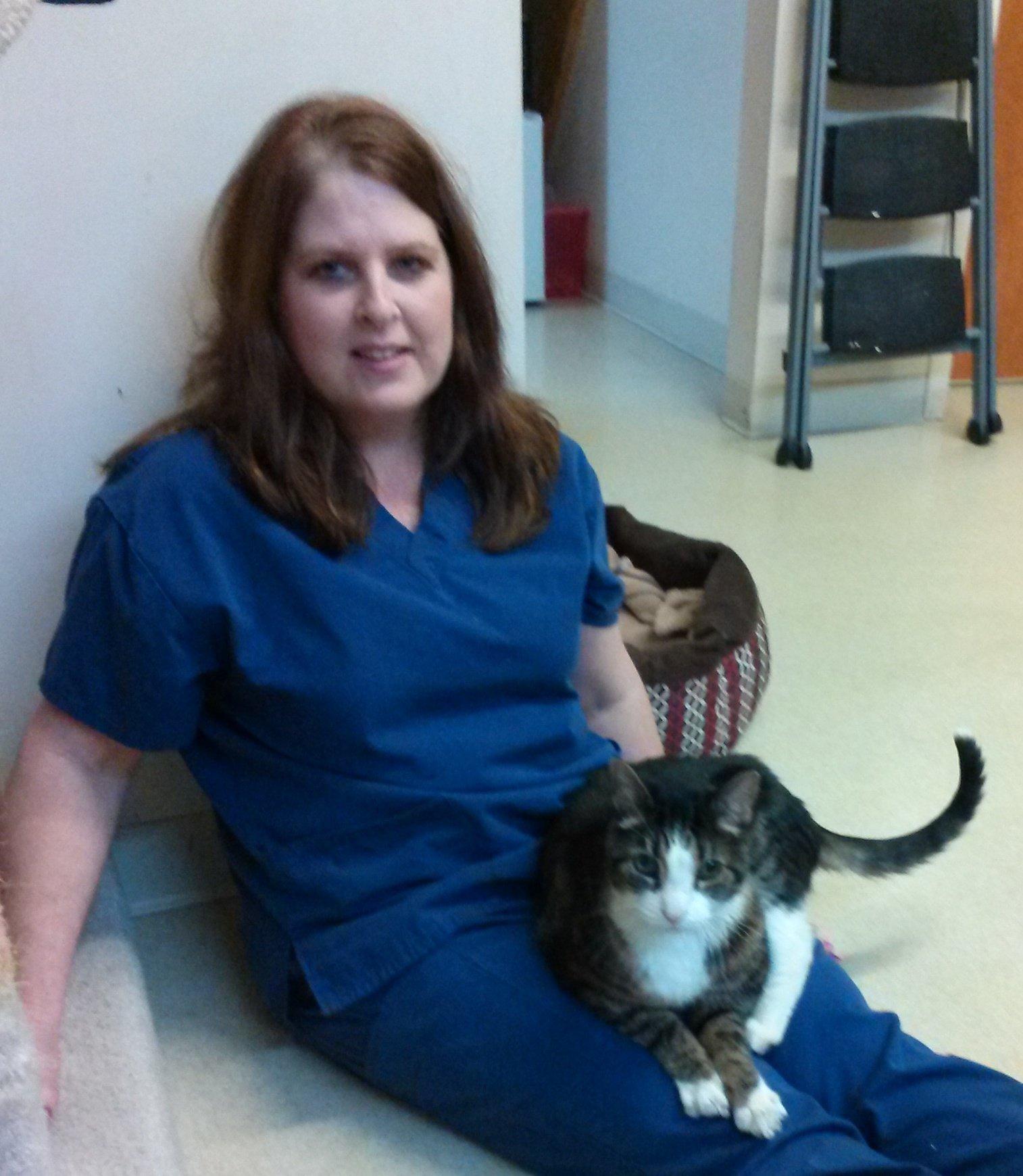 Christy - Cat Clinic Boarding & Kennel
