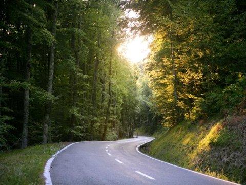 realizzazione strade livorno
