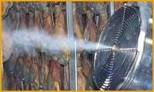 "Macchine per produzione Aerosol ad ""Ultra Basso Volume"" Green Mouse Pest"