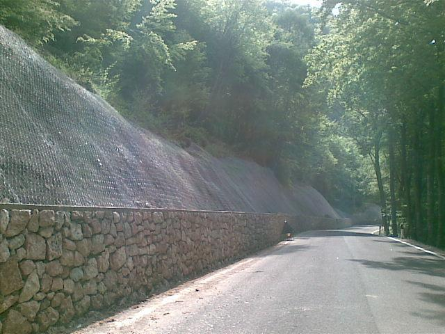 strada con reti metalliche ai bordi della strada