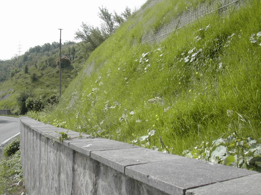 muro accanto a una strada