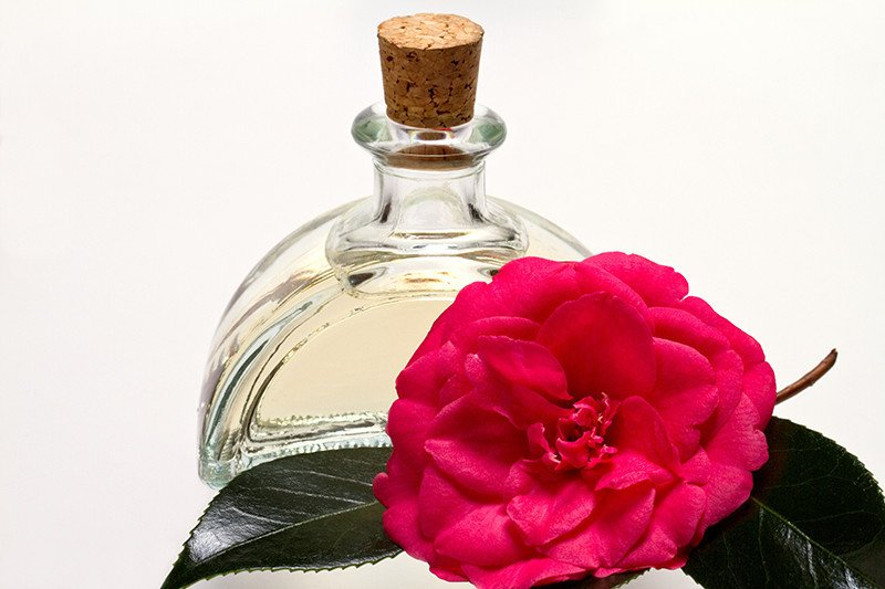 Minimize stretch marks with camellia oil