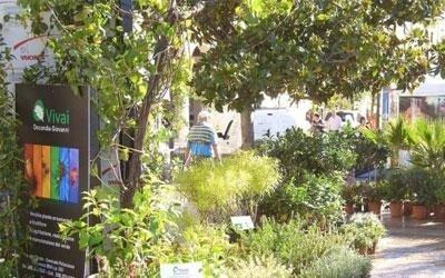 Giardini con piante