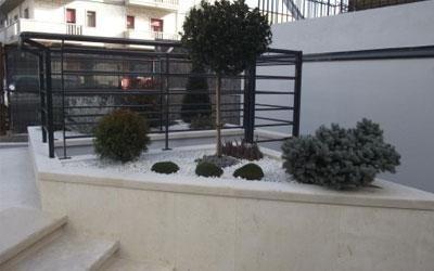 Realizzazione giardino con piante