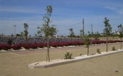 Aree verdi con piante e fiori