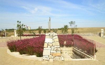 Realizzazione aree verdi con fiori