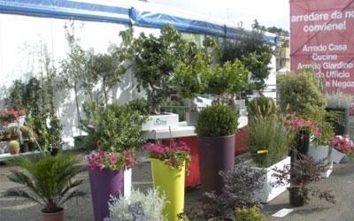 Fiere vendita piante