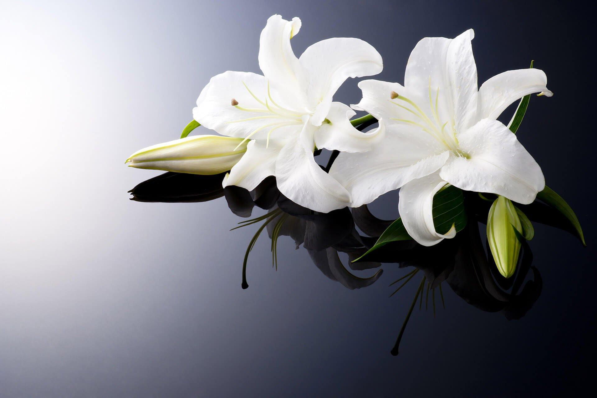 addobbi floreali per  funerali