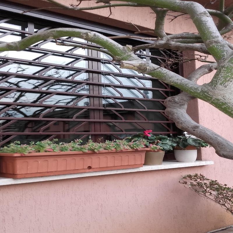 vista esterna di una casa con serramento in vetro e ferro e vase di fiori