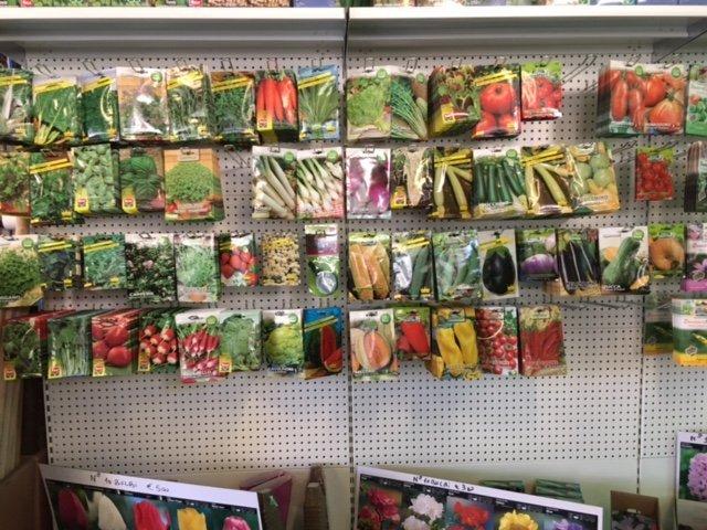 semi in vendite al vivaio
