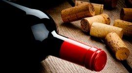 ingrosso vino