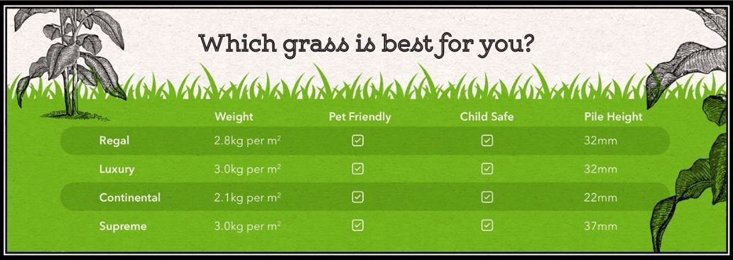 grass graphic