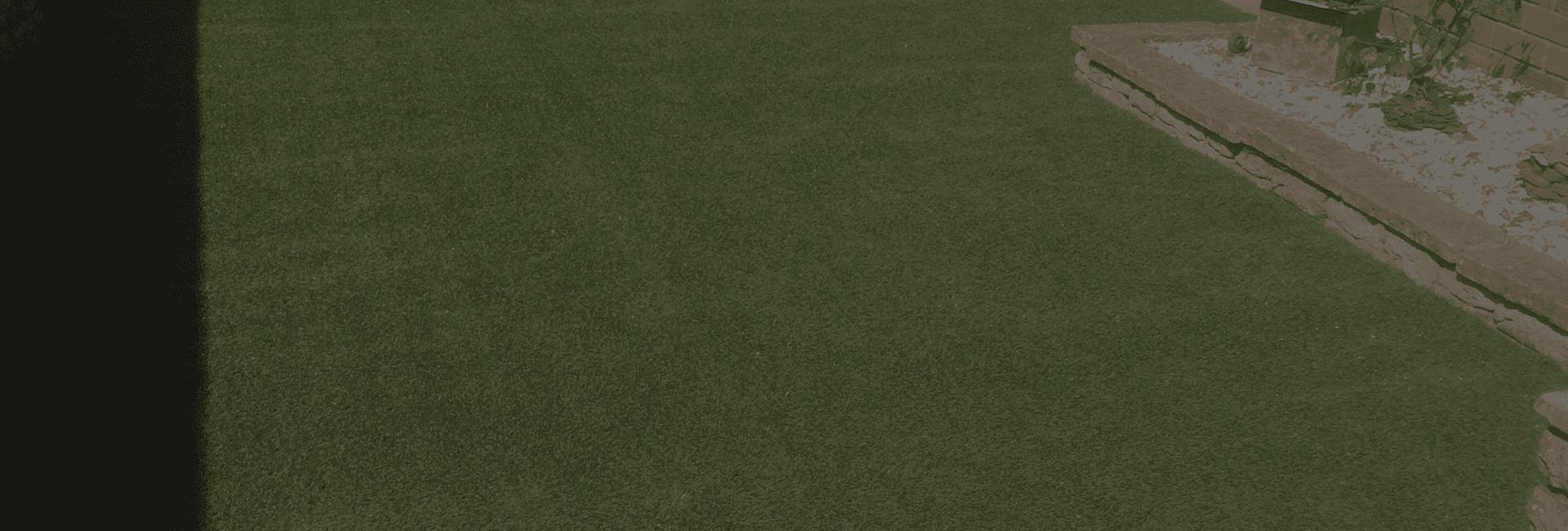 light green landscape