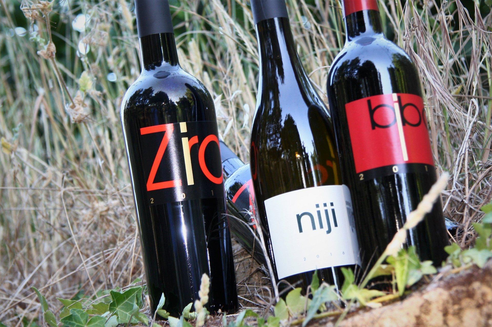 bottiglie di vino rosso in vigneto