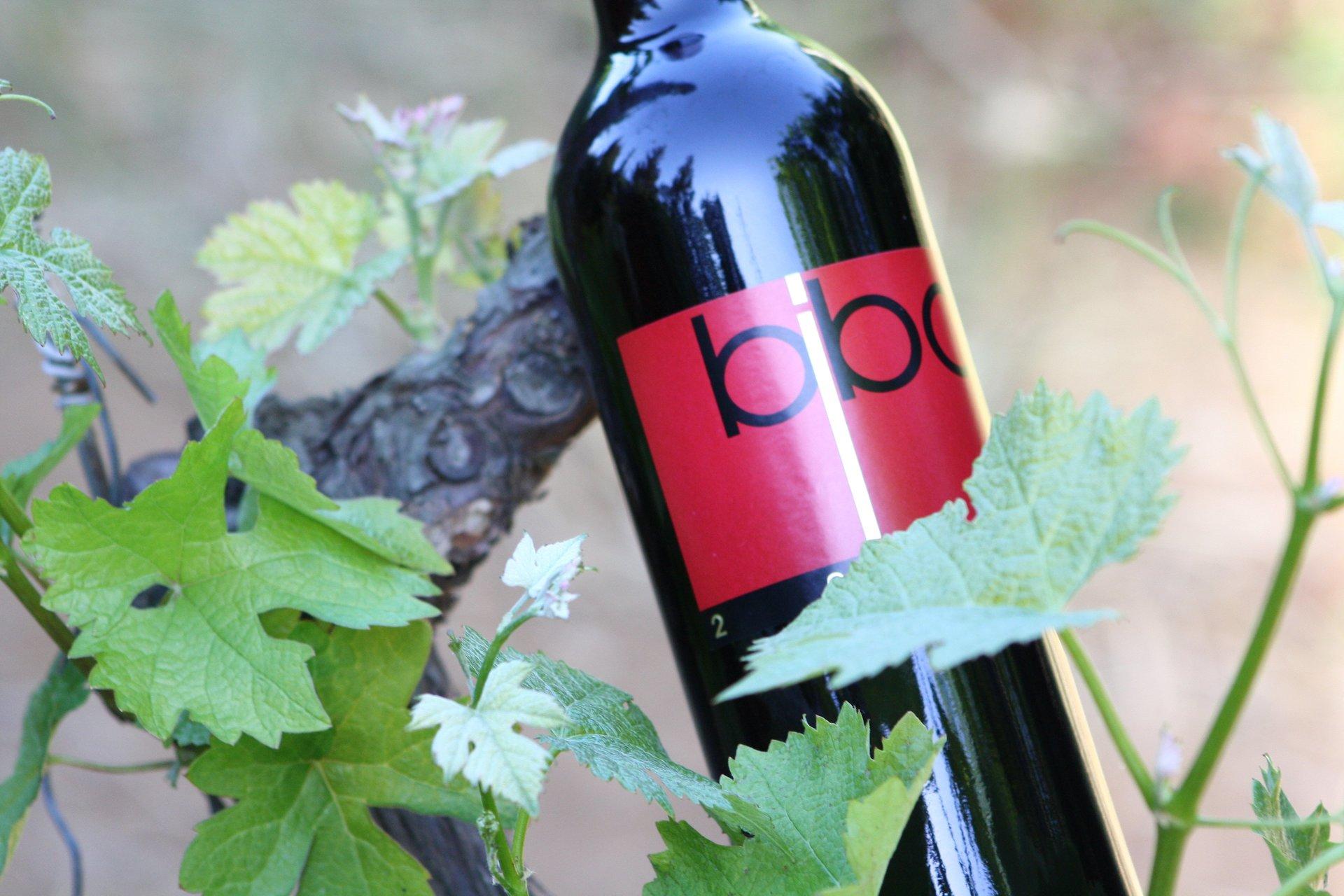 Bottiglia vino rosso Bibo