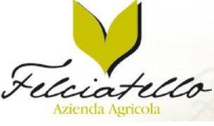 FELCIATELLO logo