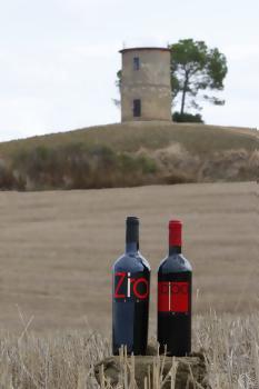 bottiglie divino appoggiate su un tronco d`albero di fronte a una torretta