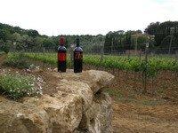 due bottiglie di vino appoggiate su una roccia