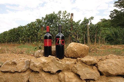 vini tipici locali appoggiati su dei sassi