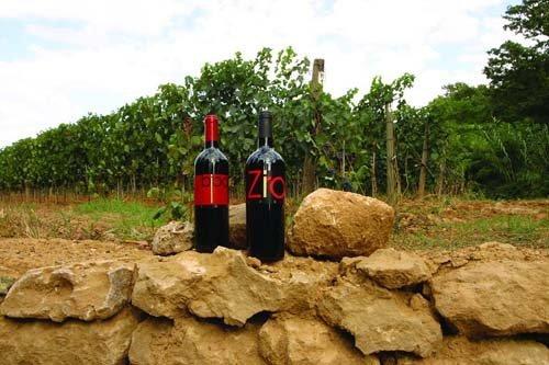 due bottiglie di vino locale